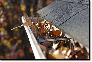 Gutter Cleaning NY